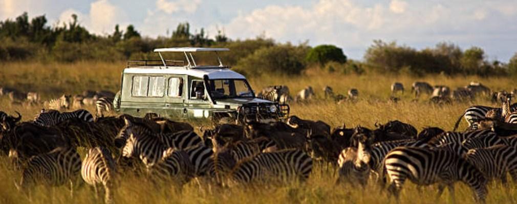 Jeep safari Kenya
