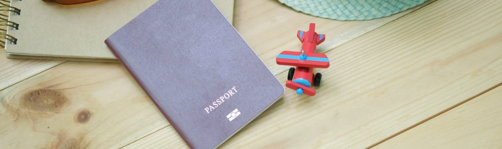 Traveling to Turkey with a passport